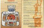 Как правильно топить печь: последовательность